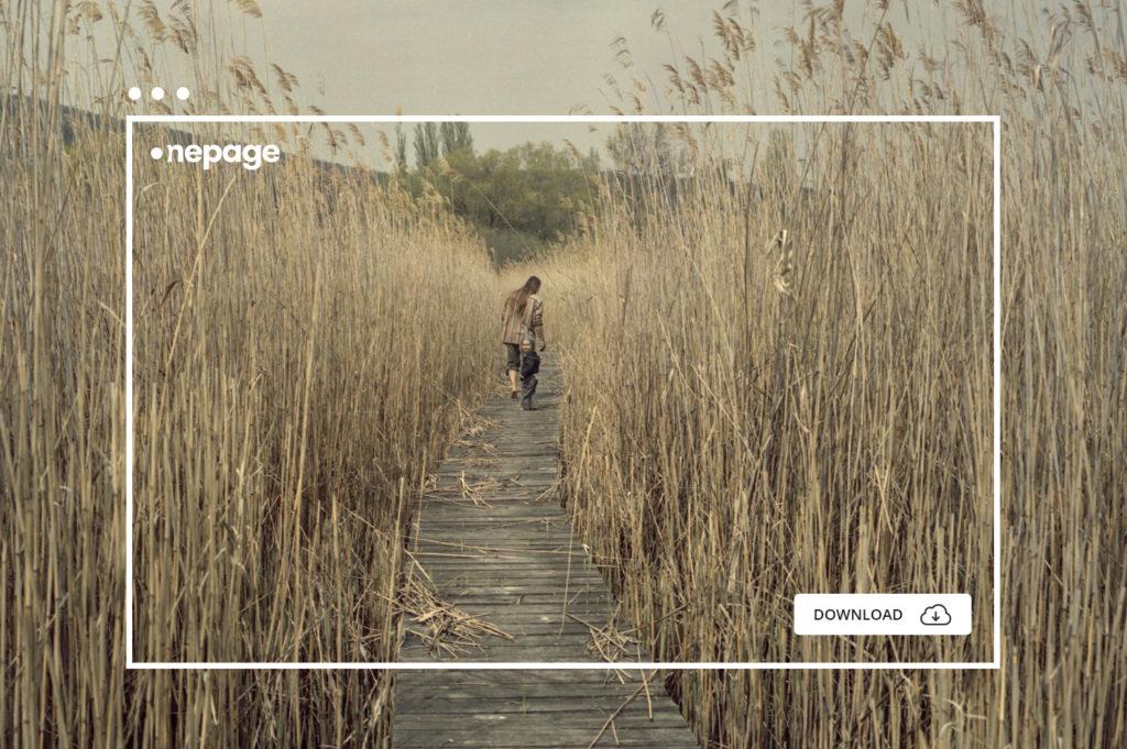 Bácsi Róbert fotográfus díjnyertes galériája a Onepage.space oldalon (kattintásra nyílik)